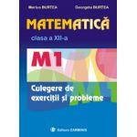 Matematica - M1 - Clasa a XII-a - Culegere de exercitii si probleme