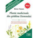 Plante medicinale din gradina Domnului  Sfaturi bune din Biblia mea de leacuri pentru pastrarea sanatatii si bunastarii