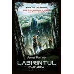 Labirintul. Evadarea, vol. 1