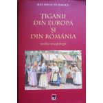 Tiganii din Europa si din Romania. Studiu imagologic