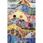 Gaudi - Povestea unui geniu solitar, inspirat, imprevizibil, generos si unic