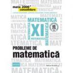 Probleme de matematica pentru clasa a XI-a. Consolidare (Colectia, mate 2000+)
