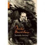 Jurnale intime - Charles Baudelaire
