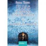 O torta in noapte - Elias si spioana Carturarilor volumul II - Sabba Tahir