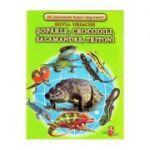 Soparle, crocodili, salamandre, tritoni - Cartonase - Silvia Ursache