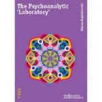 The Psychoanalytic Laboratory - Simona Reghintovschi