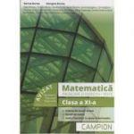 Matematica. Probleme si exercitii, teste clasa a XI-a (PROFIL TEHNIC) - Sisteme de ecuatii liniare, Functii derivabile, Studiul functiilor cu ajutorul derivatelor