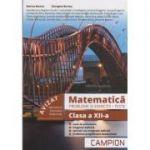 Matematica. Probleme si exercitii, teste clasa a XII-a (PROFIL TEHNIC) - Inele de polinoame, Integrala definita, Aplicatii ale integralei definite, Problemepregatitoare bacalaureat