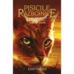 Pisicile Razboinice, volumul 12 - Apus de Soare