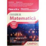 Culegere de matematica clasa a IX-a semestrul 1 - Filiera teoretica, specializarea matematica-informatica