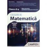 Culegere de matematica clasa a X-a - Filiera teoretica, specializarea matematica-informatica