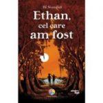 Ethan, cel care am fost - Ali Standish