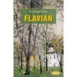 Flavian, volumul 1 - Alexandru Torik