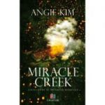 Miracle Creek. Locul unde se intampla miracole - Angie Kim