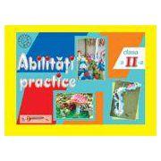 Abilitati Practice - Caiet clasa a II - a