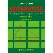 Matematica - Exercitii si probleme de algebra si geometrie - Clasa a VII-a - Semestrul I