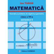 Exercitii si probleme de algebra si geometrie - Clasa a VII-a - Semestrul II