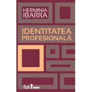 Identitatea profesională - Strategii necovenţionale pentru redefinirea carierei