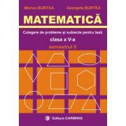 Matematica - Clasa a V-a - Culegere de probleme si subiecte pentru teze - Sem.2