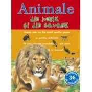 Picto-abtibilduri cu animale - Animale din jungla si din savana