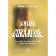 Suflete curajoase - Ne planificam incercarile vietii, inainte de a ne naste ?