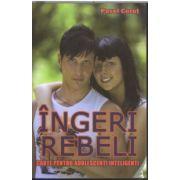 Ingeri rebeli - Carte pentru adolescenţi inteligenţi