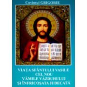 Viata Sfantului Vasile cel Nou - Vamile vazduhului si infricosata judecata