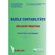 Bazele contabilitatii. Aplicatii practice in entitatile din Romania