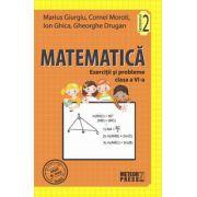 Matematica. Exercitii si probleme. Clasa a VI-a, semestrul II 2011-2012