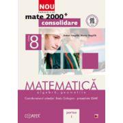 Mate 2000 pentru clasa a VIII-a. Partea I - CONSOLIDARE. Matematica, algebra, geometrie