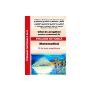 Matematica - Ghid de pregatire pentru examenul de evaluare nationala 2013