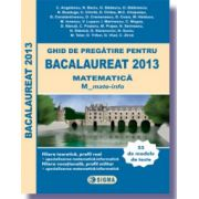 Ghid de pregatire pentru Bacalaureat 2013 - Matematica M_mate-info