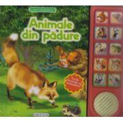 Animale din padure - Vocile adevarate ale animalelor!