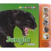 Jungla - Apasa pe butoane si vei auzi animalele din jungla!