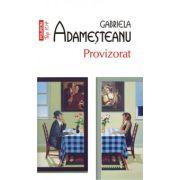 Provizorat - Gabriela Adamesteanu