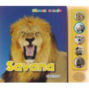 Savana - Apasa pe butoane si vei auzi animalele din savana!