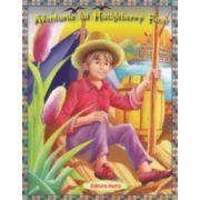 Aventurile lui Huckleberry Finn. Poveste ilustrata