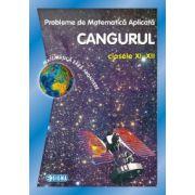 Cangurul 2014. Probleme de matematica aplicata CANGURUL, pentru clasele XI-XII