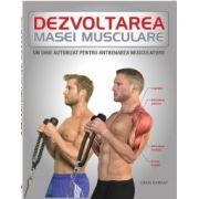 Dezvoltarea masei musculare: Un ghid autorizat pentru antrenamentul musculaturii