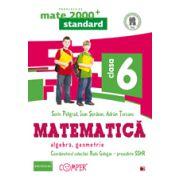 Mate 2013 Standard - Algebra, geometrie. Cls. a VI-a
