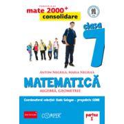 Mate 2013 Consolidare - Algebra, geometrie. Cls. VII-a partea 1