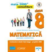 Mate 2013 Consolidare - Algebra, geometrie. Cls. VIII-a partea 1