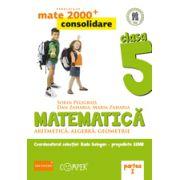 Mate 2013 Consolidare - Algebra, geometrie. Cls. V-a partea 1