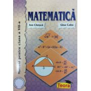 Matematica, manual pentru clasa a VII-a, Ion Chesca