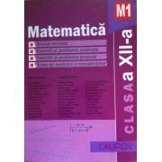 Matematica M1, clasa a XII-a, culegere de probleme