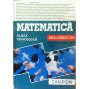 Matematica bacalaureat 2014. Filiera tehnologica, exercitii recapitulative. Teste