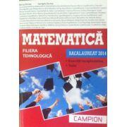 Matematica bacalaureat 2014, filiera tehnologica. Exercitii recapitulative. Teste