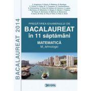 Pregatirea examenului de Bacalaureat 2014 in 11 saptamani. Matematica. M_tehnologic