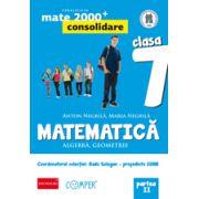Mate 2013 Consolidare - Algebra, geometrie. Cls. VII-a partea 2