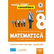 Mate 2013 Consolidare - Algebra, geometrie. Cls. VIII-a partea 2